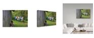 "Trademark Global Incredi 'Laundry Day' Canvas Art - 47"" x 30"""