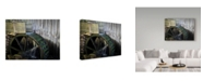 "Trademark Global J.D. Mcfarlan 'Smokies 3' Canvas Art - 47"" x 35"""
