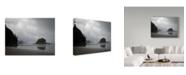 "Trademark Global J.D. Mcfarlan 'Olympic Np 4' Canvas Art - 47"" x 35"""