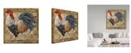 "Trademark Global Jean Plout 'Le Coq 2' Canvas Art - 35"" x 35"""