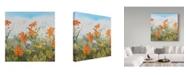 "Trademark Global Jean Plout 'Wildflowers Sky' Canvas Art - 35"" x 35"""