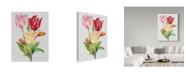 "Trademark Global Jean Plout 'Botanicals 11' Canvas Art - 35"" x 47"""