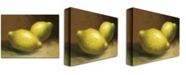"Trademark Global 'Lemons' Canvas Art - 32"" x 24"""