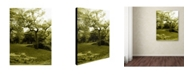 "Trademark Global Miguel Paredes 'Central Park II' Canvas Art - 47"" x 35"""