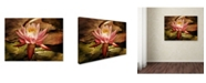 "Trademark Global Lois Bryan 'Magic Lily' Canvas Art - 32"" x 22"""