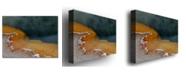 "Trademark Global Nicole Dietz 'Yellowstone Hot Springs' Canvas Art - 47"" x 30"""