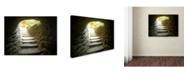 """Trademark Global Monica Fleet 'Indeception' Canvas Art - 32"""" x 24"""""""