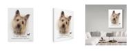 "Trademark Global Howard Robinson 'Cairn Terrier' Canvas Art - 14"" x 19"""