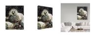 "Trademark Global Ron Parker 'Low Water Raccoon' Canvas Art - 14"" x 19"""