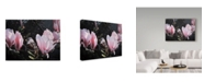 """Trademark Global Ron Parker 'Sparrow In Magnolia' Canvas Art - 14"""" x 19"""""""