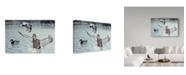 "Trademark Global Rusty Frentner 'Decoyed Ducks' Canvas Art - 12"" x 19"""