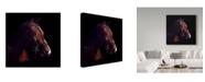 "Trademark Global Rusty Frentner 'Untitled' Canvas Art - 14"" x 14"""