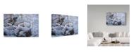 "Trademark Global Wilhelm Goebel 'Snow Glow Field Sparrows' Canvas Art - 12"" x 19"""