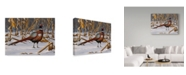 "Trademark Global Wilhelm Goebel 'Corn Row Ring Neck' Canvas Art - 14"" x 19"""