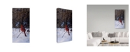 "Trademark Global Wilhelm Goebel 'Roadside Cardinal' Canvas Art - 12"" x 24"""