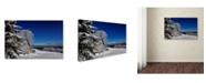 "Trademark Global Lois Bryan 'It's Got a Million Dollar View' Canvas Art - 12"" x 19"""