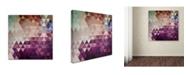 "Trademark Global Christian Jackson 'Trivector' Canvas Art - 14"" x 14"""