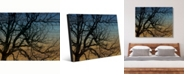 "Creative Gallery Tree Silhouette At Dusk on Wood-Pattern Portrait Metal Wall Art Print - 24"" x 36"""
