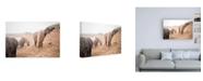 """Trademark Global Laura Marshall Horses of Hofn II Canvas Art - 19.5"""" x 26"""""""