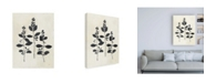 "Trademark Global Julia Purinton Botanical Study IV Canvas Art - 36.5"" x 48"""