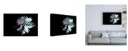 "Trademark Global Philippe Hugonnard Wild Explosion Collection - the Zebra Canvas Art - 36.5"" x 48"""