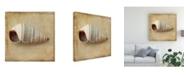 "Trademark Global Judy Stalus Sepia Shell IV Canvas Art - 27"" x 33"""