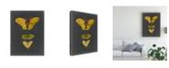 """Trademark Global Naomi Mccavitt Butterflies on Slate I Canvas Art - 15"""" x 20"""""""