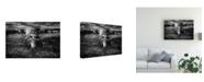 "Trademark Global Peter Majkut Face to Face Ram Canvas Art - 37"" x 49"""