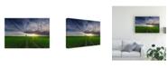 "Trademark Global Piotr Krol Bax Loner in the Sun Canvas Art - 20"" x 25"""