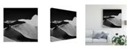"""Trademark Global Mathilde Guillemot Abstract Dunes Black Canvas Art - 15"""" x 20"""""""