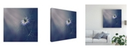 "Trademark Global Dimitar Lazarov Tender Blue Canvas Art - 27"" x 33"""