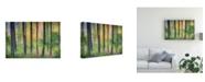 "Trademark Global Burger Jochen Dreamy Tree Foliage Canvas Art - 15"" x 20"""