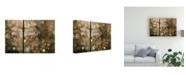 "Trademark Global Rob Blanken Morning Light Dragonfly Canvas Art - 20"" x 25"""