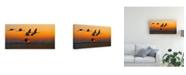 "Trademark Global Hua Zhu Red Crowned Crane Canvas Art - 20"" x 25"""