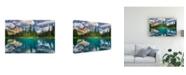 "Trademark Global Zoran Dujic Lighthunter Emerald Canvas Art - 20"" x 25"""