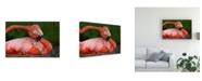 "Trademark Global Xavier Ortega Tender Love Canvas Art - 15"" x 20"""