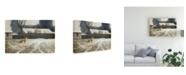 """Trademark Global Michael Budden Where Paths Cross Canvas Art - 20"""" x 25"""""""