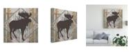 "Trademark Global Vision Studio Southwest Lodge Animals IV Canvas Art - 15"" x 20"""