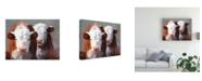 """Trademark Global Carolyne Hawley Buddies Cows Canvas Art - 15"""" x 20"""""""