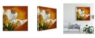 """Trademark Global Pablo Esteban White Flower Over Orange Light 2 Canvas Art - 36.5"""" x 48"""""""