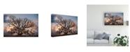 "Trademark Global Rachel Perry Still Life Canvas Art - 19.5"" x 26"""