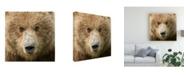 "Trademark Global PH Burchett Bear Life I Canvas Art - 36.5"" x 48"""