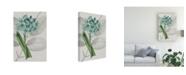 "Trademark Global Vision Studio Botanical Arrangement II Canvas Art - 19.5"" x 26"""