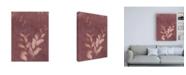 "Trademark Global Natalie Sizemore Botanical Sun II Canvas Art - 19.5"" x 26"""