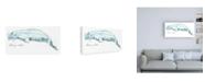 "Trademark Global June Erica Vess Cetacea Beluga Whale Canvas Art - 36.5"" x 48"""