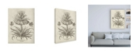 "Trademark Global Vision Studio Fresco Crown Imperial III Canvas Art - 36.5"" x 48"""