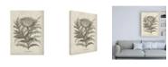 "Trademark Global Vision Studio Fresco Artichoke I Canvas Art - 19.5"" x 26"""