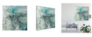 "Trademark Global Jennifer Goldberger Sea Lace I Canvas Art - 20"" x 25"""