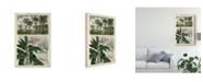 "Trademark Global Vision Studio Journal of the Tropics I Canvas Art - 20"" x 25"""