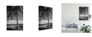 """Trademark Global Debra Van Swearingen Ocean View Bw Canvas Art - 20"""" x 25"""""""